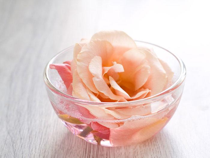 mjesto za upoznavanje ruža Razlika između izlazaka i udvaranja